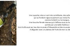 Muscat sec cave Chateau de Calce
