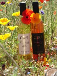 Vins doux naturels Calce